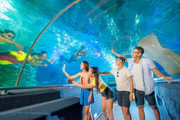 Một ngày khám phá trọn vẹn thiên đường giải trí tại Nha Trang - Ảnh 5.