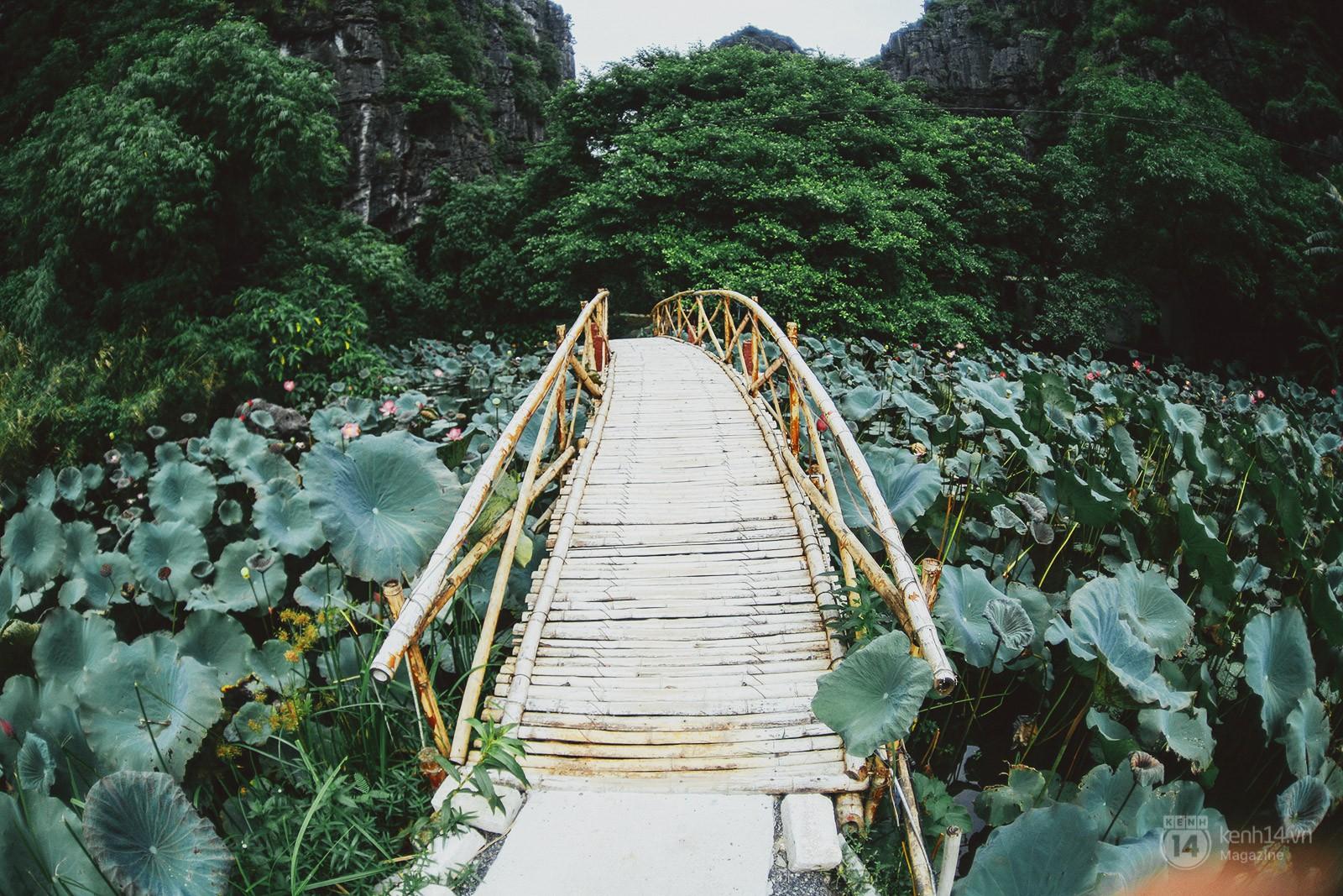 Tưởng chán muốn xỉu, nhưng 4 địa điểm này lại sắp trở thành những thiên đường mới của Việt Nam rồi đấy! - Ảnh 33.