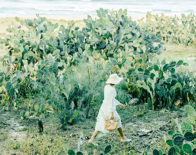 Nhờ bộ ảnh này mà chúng ta biết được một chốn chụp ảnh sống ảo cực mới ở Đà Nẵng - Hội An - Ảnh 6.