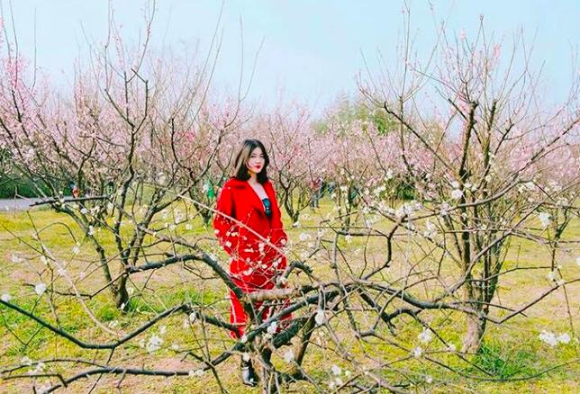 Lướt Instagram từ Âu đến Á là biết mùa hoa anh đào tuyệt đẹp đã thực sự đến rồi! - Ảnh 15.