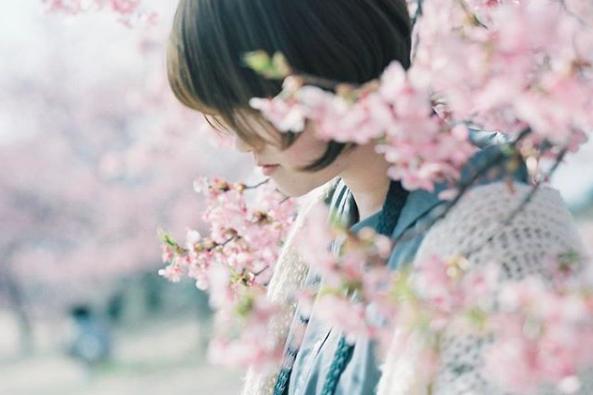 Lướt Instagram từ Âu đến Á là biết mùa hoa anh đào tuyệt đẹp đã thực sự đến rồi! - Ảnh 4.
