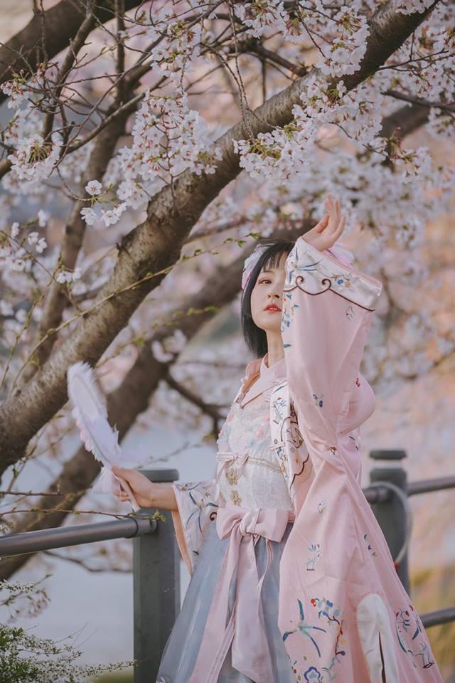 """Cánh rừng với 50.000 cây hoa anh đào ở Nhật Bản, """"nhuộm hồng"""" cả một quả núi và đẹp đến khó tin! - Ảnh 5."""