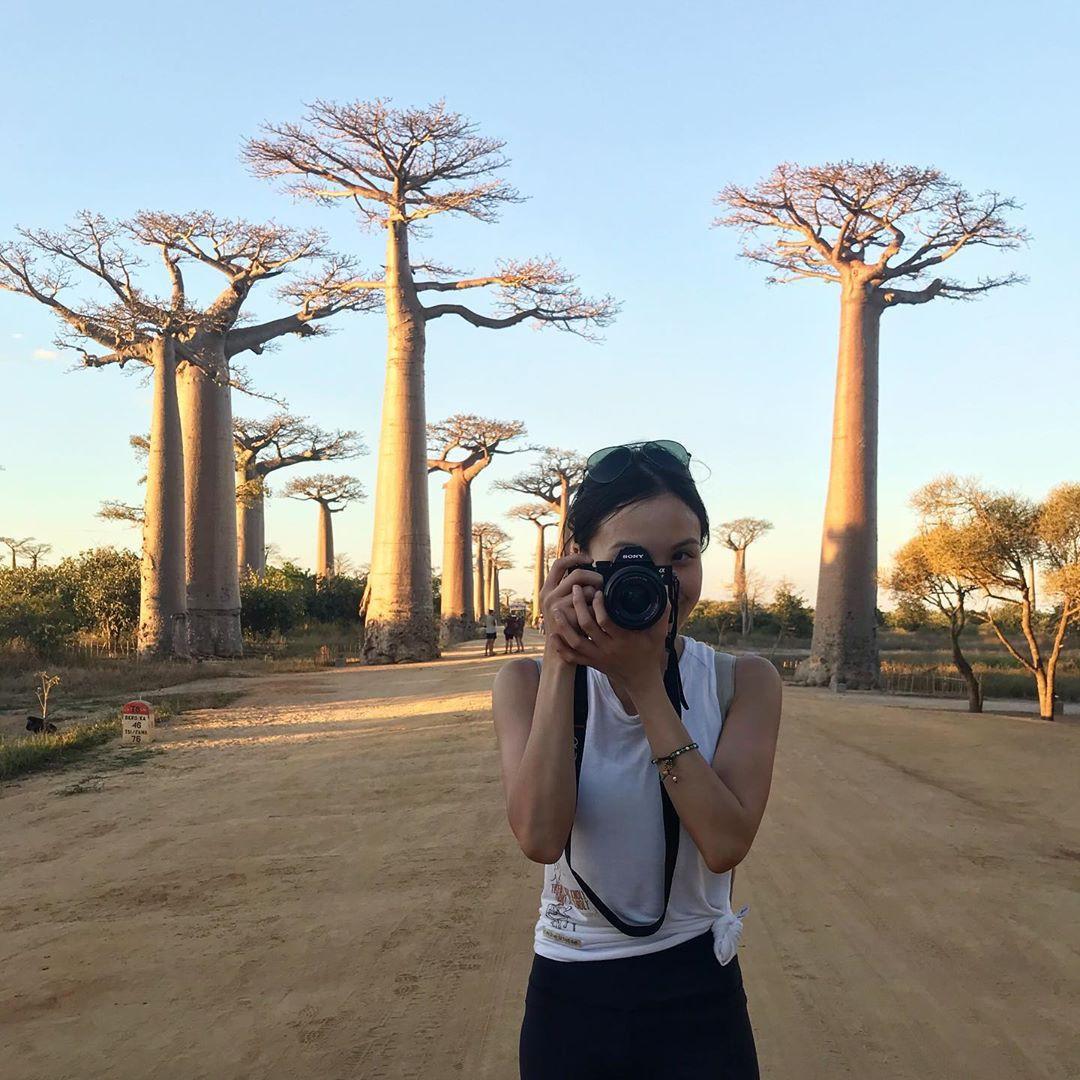 Dính phải lời nguyền phải mọc ngược, rừng cây ở Madagascar nay lại trở thành điểm check-in xịn xò của giới blogger du lịch - Ảnh 4.