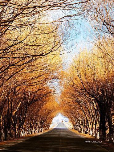 """Lạnh -21 độ C nhưng vẫn đẹp """"tê tái"""", Tân Cương (Trung Quốc) quả không hổ danh đẹp hơn tranh vẽ!"""